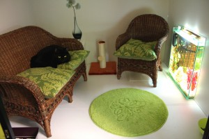 La Minouterie luxury cat hotel, Paris, Ile de France