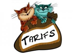 La Minouterie - Pension pour chat en région parisienne – tarifs pension chat
